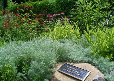 Butterfly Garden 2010 - 2